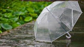Umbrella. Nanjing, China during the rainy season, the transparent umbrella in outdoor shooting stock photos