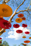Umbrella paper hung on the tree Royalty Free Stock Images
