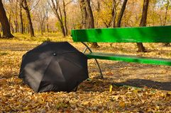 Umbrella in a park Royalty Free Stock Photography