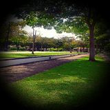 Umbrella Park, Miri, Sarawak, Malaysia Stock Photo