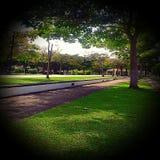 Umbrella Park, Miri, Sarawak, Malaysia. Pleasant and relax view of Umbrella Park Stock Photo