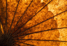 Umbrella. Part of a handmade umbrella, the sunlight shines through the paper and shows the beautiful warm colors, Myanmar, Southeast Asia stock images