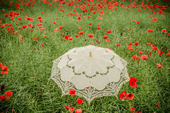 Umbrella in poppies field. Artistic interpretation. Royalty Free Stock Photos