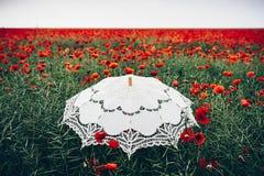 Umbrella in poppies field. Artistic interpretation. Stock Photos