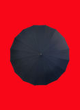 Umbrella on red Royalty Free Stock Image