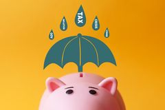 Umbrella saves piggy bank from rain of risks. Umbrella saves piggy bank savings from rain of risks: tax, government, inflation, loans, crisis stock photos