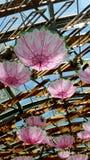 Umbrella shades. Pink umbrella shades with wooden roof Royalty Free Stock Photos
