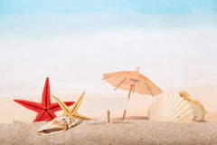 Umbrella, shells and starfishes in sand Stock Images