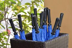 Umbrella Stand Stock Images