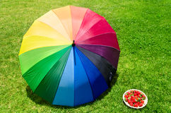 Umbrella and strawberry on the grass Stock Photography