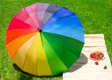 Umbrella and strawberry on the grass Royalty Free Stock Images