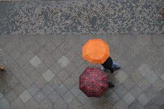 Umbrella talk Stock Image