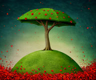 Umbrella tree Stock Photo