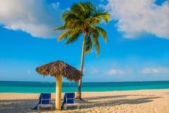Umbrella and two lounge chairs around palm trees. Tropical beach. Caribbean sea, Holguin, Cuba, Playa Esmeralda. Umbrella and two lounge chairs around palm Stock Photo