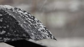 Umbrella under snow. Blizzard umbrella under the snow close to stock video
