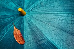 Umbrella and yellow leaf. Wet umbrella and dry yellow leaf Royalty Free Stock Photos