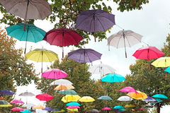 Umbrellas in autumn in the countryside from  Netherlands Stock Images
