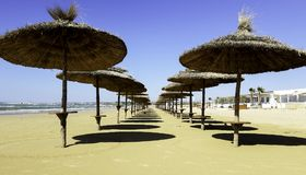 Umbrellas on a beach in Italy. Umbrellas line the beach at this resort in Sicily Stock Photography