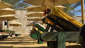 Umbrellas on the beach. The sunbeds on the beach.  stock footage