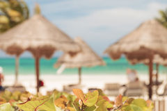 Umbrellas on the beach in Tulum, Mexico. Royalty Free Stock Images