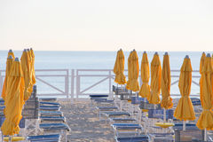 Umbrellas and chairs on a bathing establishment Royalty Free Stock Image
