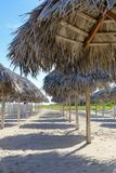 Umbrellas on the empty beach, Cuba, Varadero Stock Photography