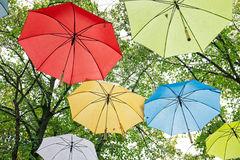 Umbrellas in fall in the trees in Netherlands. Umbrellas in fall in the trees in the Netherlands Royalty Free Stock Photography