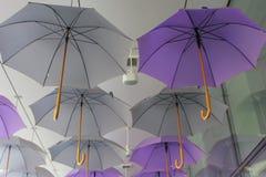 Umbrellas Stock Photography