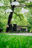 Umbrellas in the garden on the trees. White umbrellas hang on trees and wicker furniture stands in the garden Stock Photography