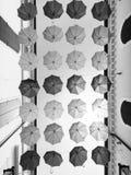 Umbrellas Stock Photos