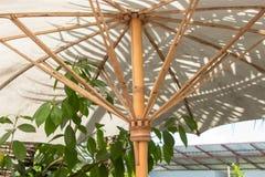 Umbrellas made of bamboo stalks royalty free stock photo