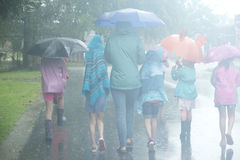 Umbrellas in the rain on a hazy day. One adult woman and five girls walking in the rain with umbrellas on a hazy summer day Royalty Free Stock Image