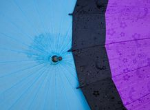 Umbrellas for sale at the fashion shop royalty free stock photography
