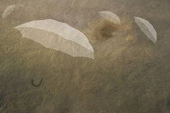 Umbrellas in the sky Royalty Free Stock Photos