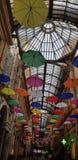 Soffitto ombrelli genova italy royalty free stock photos