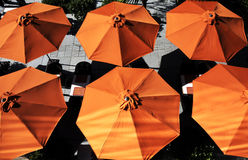 Umbrellas in summer Royalty Free Stock Photo