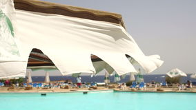 Umbrellas swimming pool and loungers on beach-club stock video footage