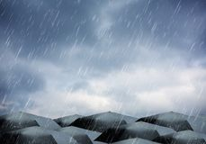Umbrellas under rain and thunderstorm. Black umbrellas under rain and thunderstorm Royalty Free Stock Photography