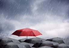 Umbrellas under rain and thunderstorm. Black and one red umbrellas under rain and thunderstorm Stock Photography
