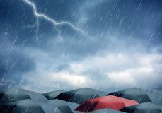Umbrellas under rain and thunderstorm Stock Photos