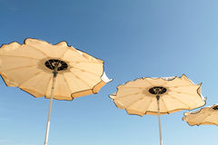 Umbrellas in the wind at the beach Stock Photography