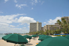 Umbrells cover Waikiki Beach near hotels Royalty Free Stock Photo