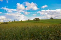 Umbria kulle Royaltyfri Foto
