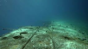 Umbria wreck deck right board in Red sea Port Sudan. Sudan stock video footage