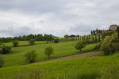 Umbrian countryside. Panorama of Umbria countryside on a cloudy day Royalty Free Stock Photos