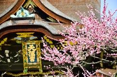 Ume blomningar och huvudbyggnad i Kitano Tenmangu Shrine, minnestavlan med namn för relikskrin` s, Kyoto, Royaltyfri Fotografi