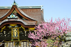 Ume Blossoms and Main Building in Kitano Tenmangu Shrine, the Tablet with Shrine`s name, Kyoto, Stock Image