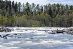 Umea River in Baggbole, Sweden Royalty Free Stock Images