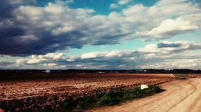 Umfangreiche bebaute Felder, sonnig, zwischen Straßen stockfoto
