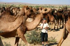 Umgeben durch Kamele lizenzfreies stockbild